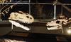 Los dinosaurios llegan a Badajoz