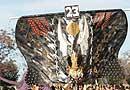 Desfile de comparsas 2007.- Zagora Zagora